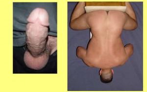 Back_Butt_Penis_Shape_03-PenisInvertedCompare