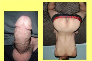 Back_Butt_Penis_Shape_04-PenisInvertedCompare