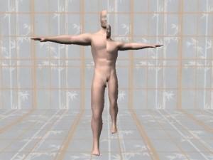 Bodily_Asymmetry_01--AsymmetriceMan