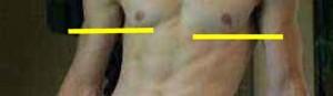 Male_Full_Body_Analysis_01-BreastsDifferentShapesLevels