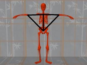 Masturbation_Causes_Skeletal_Misalignment-ErectSkeletonArmHipTriangles