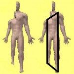 "An Asymmetric Body Has A Trapezoidal Shape, So It Is Also Accurate To Say ""Masturbation Makes A Human Body Trapezoidal"""
