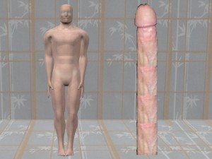 Penis_Vagina_Are_Curves-BodyLikeLargePenis