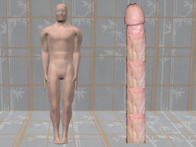Big penis in vagina