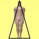Masturbation and The Pyramid View of the Human Body