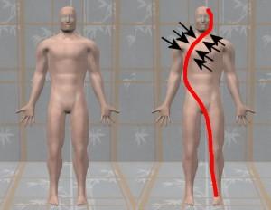 Raw_Data_Analysis_01-MasturbationWaveShrinkageShoulder