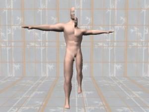 Real_Body_ASymmetry-AsymmetricComputerBody