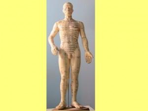 The_Fiber_View_01-AcupunctureMan