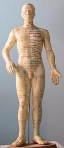 The_Fiber_View_02-AcupunctureMan