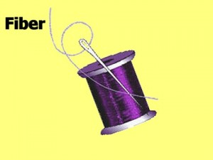 The_Fiber_View_02-ThreadFiber