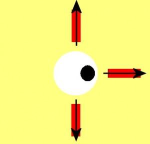 Directional_Blindness-EyeLefttRectangleMissing