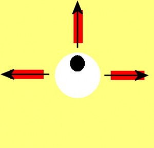 Directional_Blindness-EyeLowerRectangleMissing