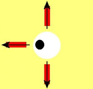 Directional_Blindness-EyeRightRectangleMissing