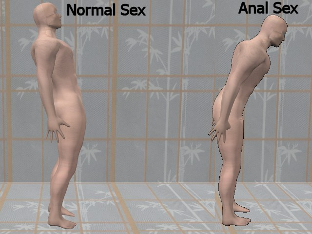 Is anal sex good or bad