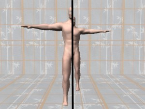 Gay_Torso_Confirms_Asymmetry-AsymmetricModelBodyCenterline