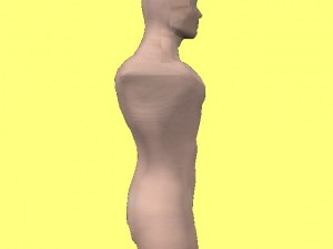 Gay_Torso_Confirms_Asymmetry-ComputerModelProfileView