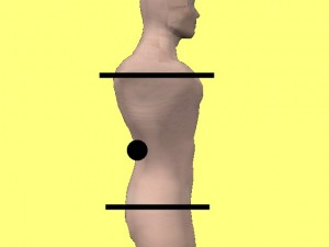 Gay_Torso_Confirms_Asymmetry-LevelShouldersHipsOnModel