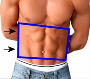 Gay_Torso_Confirms_Asymmetry-RightSideTrapezoidTaller
