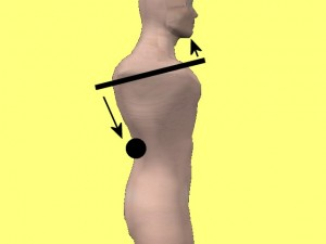Gay_Torso_Confirms_Asymmetry-SlantedShouldersOnModel