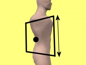 Gay_Torso_Confirms_Asymmetry-StretchRightFront