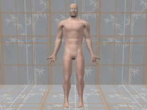Gay_Torso_Confirms_Asymmetry-SymmetricComputerModelBody