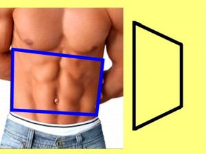 Gay_Torso_Confirms_Asymmetry-TrapezoidGayTrapezoidCompare