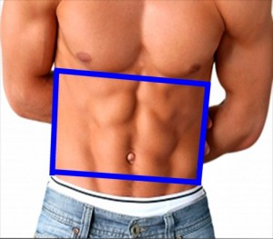 Gay_Torso_Confirms_Asymmetry-TrapezoidOnGayTorso
