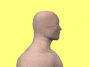 Male_Full_Body_Analysis_14-NormalHeadPosition