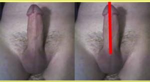 The_Straight_Pointing_Penis_Analysis_09-PenisCenterline