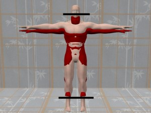 Energy_Body_Distortion_Video_01-AllCasesVerticalShrinkage