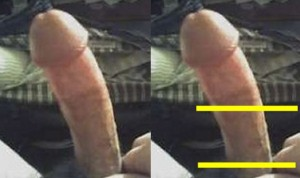 The_Left_Pointing_Penis_Analysis_13-LowerLeftPenisCloseup