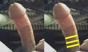 The_Left_Pointing_Penis_Analysis_13-LowerPenisSmallerDiameter