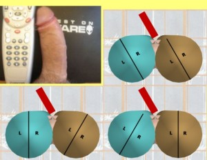 The_Left_Pointing_Penis_Analysis_15-PenisCylinderCombinationsCompare