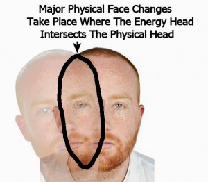 Head_Change_Overview-EnergyFaceChangeAreaLabeled